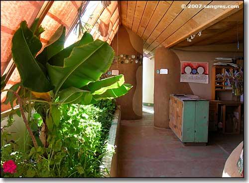de plantentuin, binnen