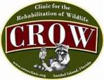 crow-logo