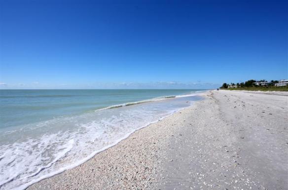 Beach (Medium)