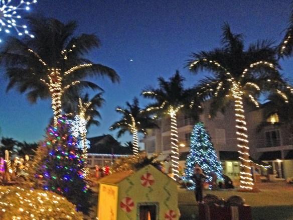 Palms&House