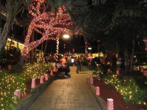 sanibel Luminary trail