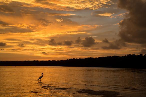 scott sunset 07-31-16
