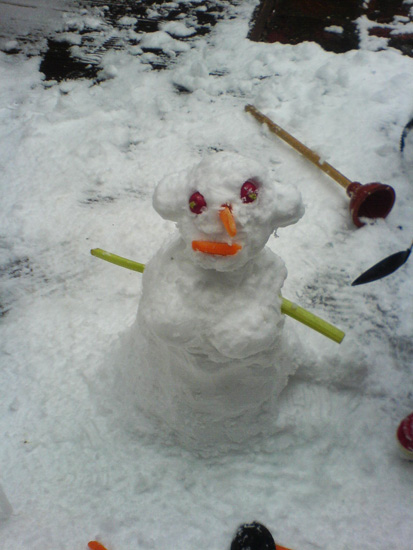 Whats so wrong with a snoWOman with cleavage huh?