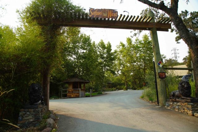 Safari West Entrance