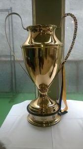 Copa ofi A