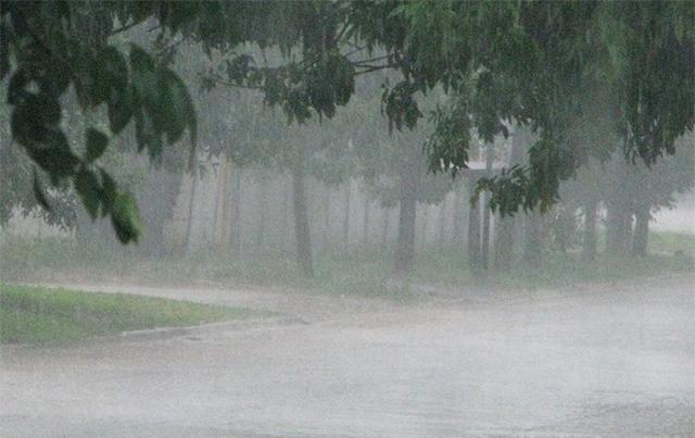 Chamizo fue la zona que registró más lluvias