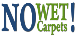 Dry Carpet Cleaning San Jose | No Wet Carpets