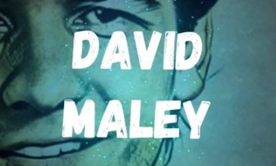 David Maley San Jose Sharks