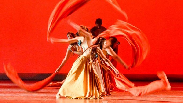 Festival Escena en Movimiento: $30 mil para las propuestas seleccionadas