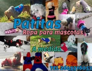 Natalia D'Angelo | Patitas - ropa para mascotas a medida