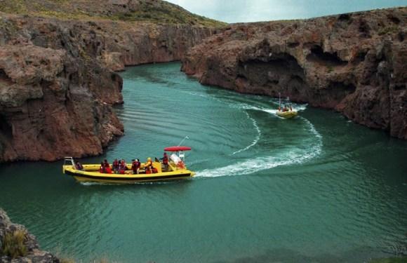 La fauna marina patagónica se destaca entre los atractivos de la Ruta Azul