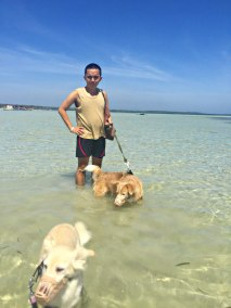 5 Pangasinan with dogs 1