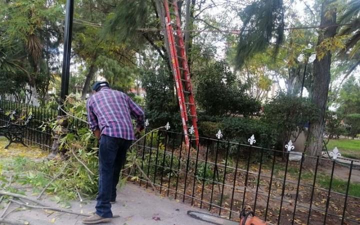 Continúa rehabilitación de la plaza principal en Villa de Pozos