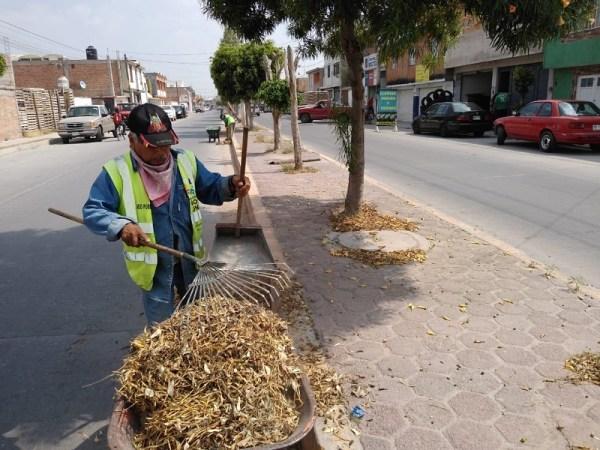 Servicios Municipales lleva limpieza perimetral y mantenimiento del municipio
