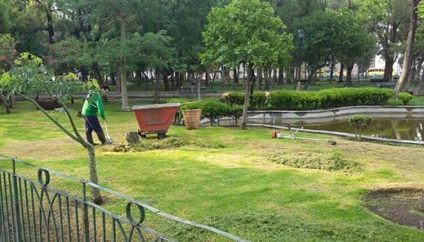 Ayuntamiento Intensifica Rehabilitación de la Alameda