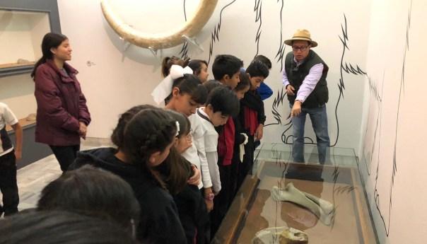 Recorrido guiado por la Sala Prehispánica del Museo Francisco Cossío