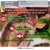 COEPRIS continúa con vigilancia sanitaria en temporada de cuaresma