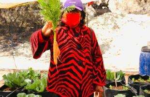 La autoproducción de alimentos permite mejorar la alimentación de las familias