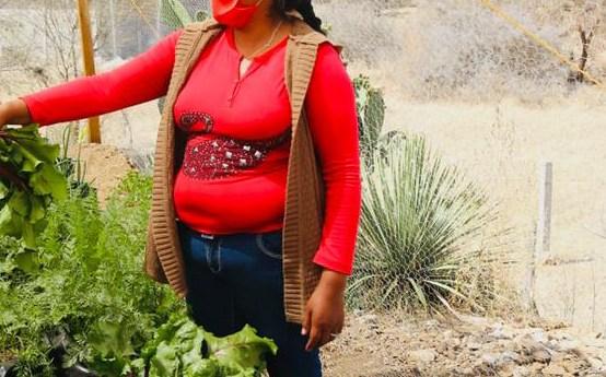 Los huertos de traspatio permiten a las familias obtener hortalizas