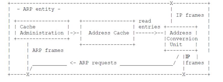 ARP layer