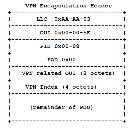 VPN Encapsulation Header