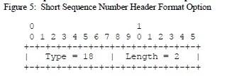 Short Sequence Number Header Format Option