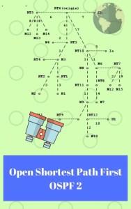 Book on OSPF