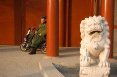 zhangzizhonglu_lionman
