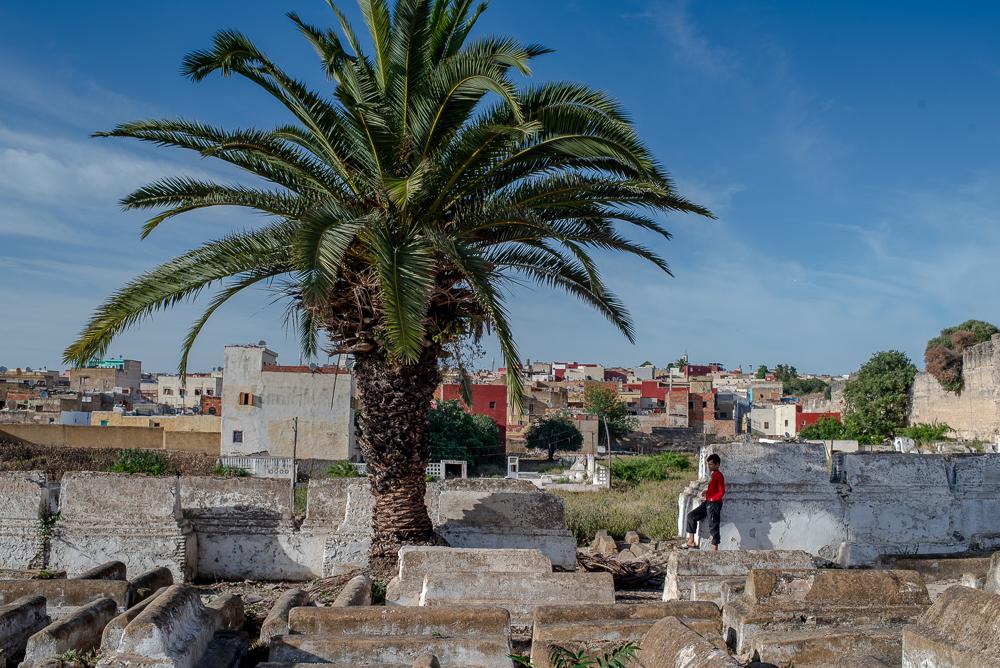 A Tale of Harira in Meknes