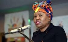 Lindiwe Zulu Biography, Age, Husband, Net Worth & Contact Details