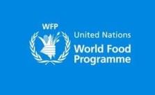 World Food Internship Programme 2021 Is Open