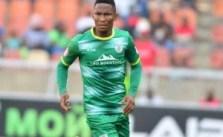 Mpho Kgaswane – Biography, Age, Career, Salary & Net Worth