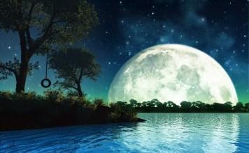 Запомняйте и тълкувайте сънищата си