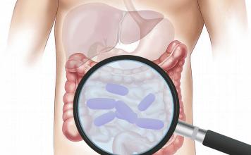 Чревни заболявания, жлъчка и бъбреци