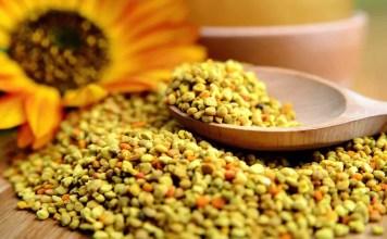 Лечебните свойства на пчелния прашец