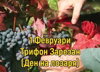 Трифоновден