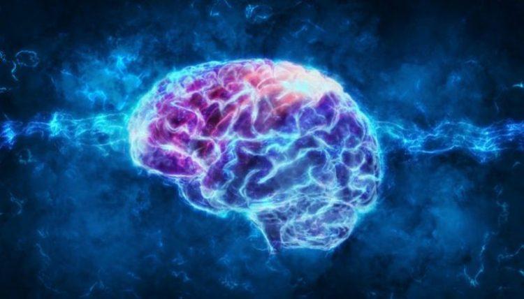 5 Peores Alimentos Para Tu Cerebro Que Te Podrían Impactar 7