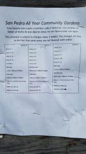Biweekly watering schedule