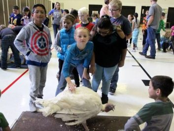 Students at Moroni Elementary lined up to pet the pardoned turkey at a Thanksgiving assembly on Nov. 23. - Daniela Vazquez / Messenger photo
