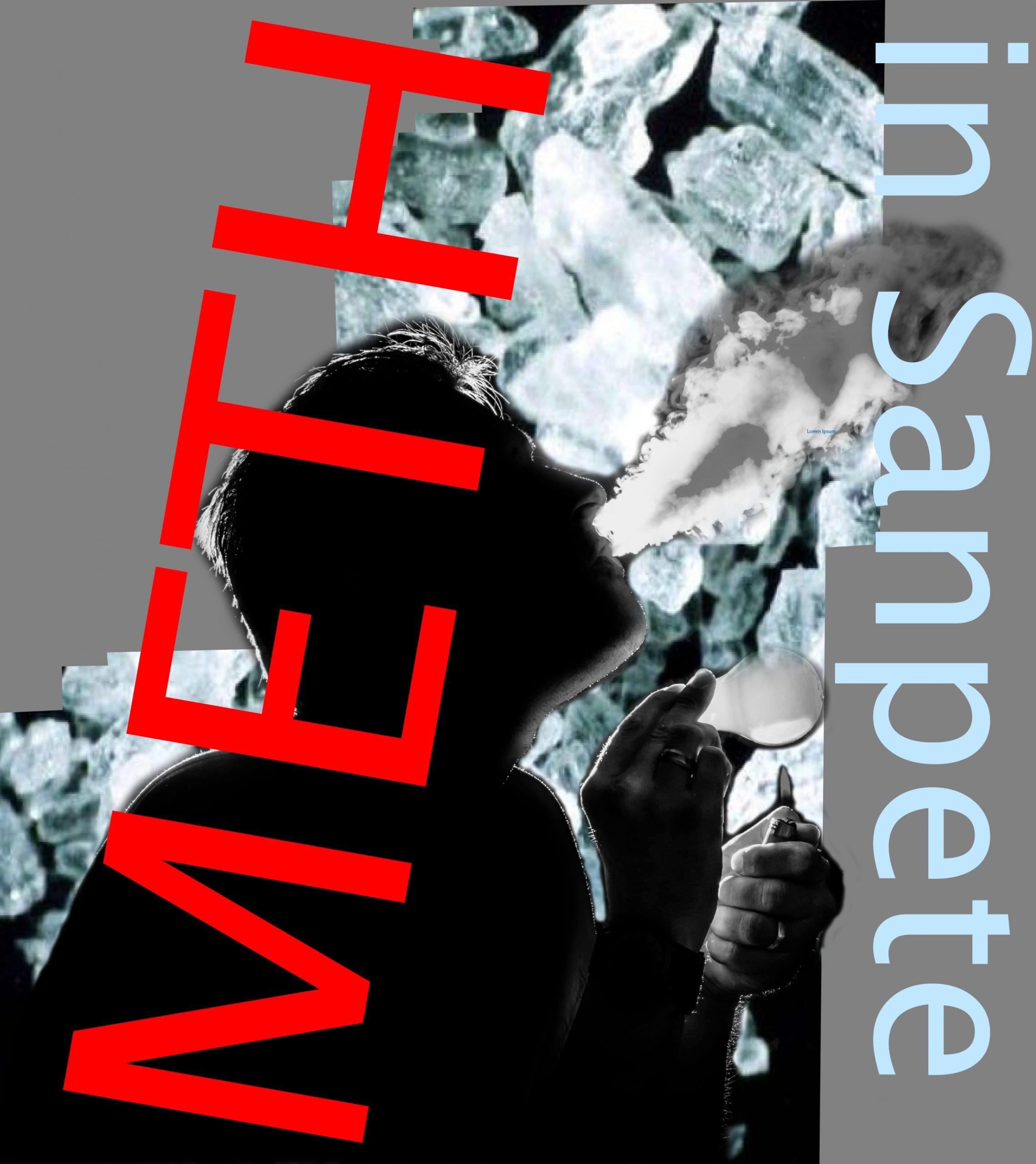 Meth Logo image