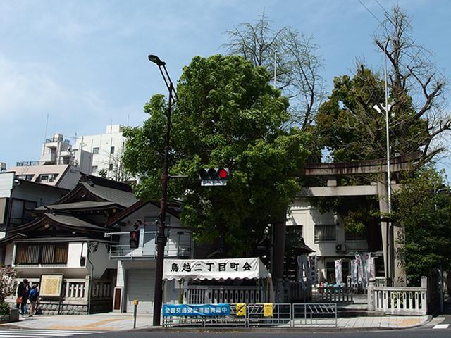 鳥越神社写真