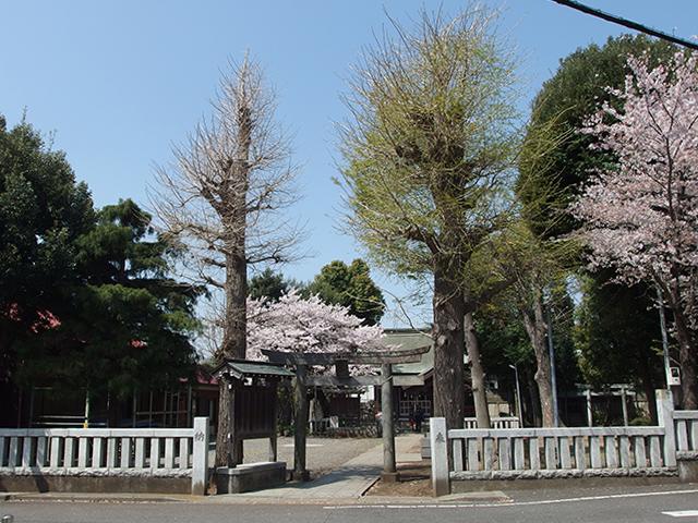 森野住吉神社写真