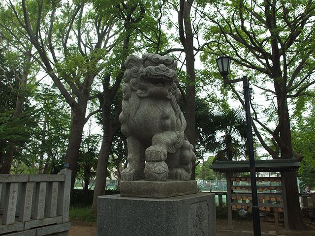 小杉神社写真