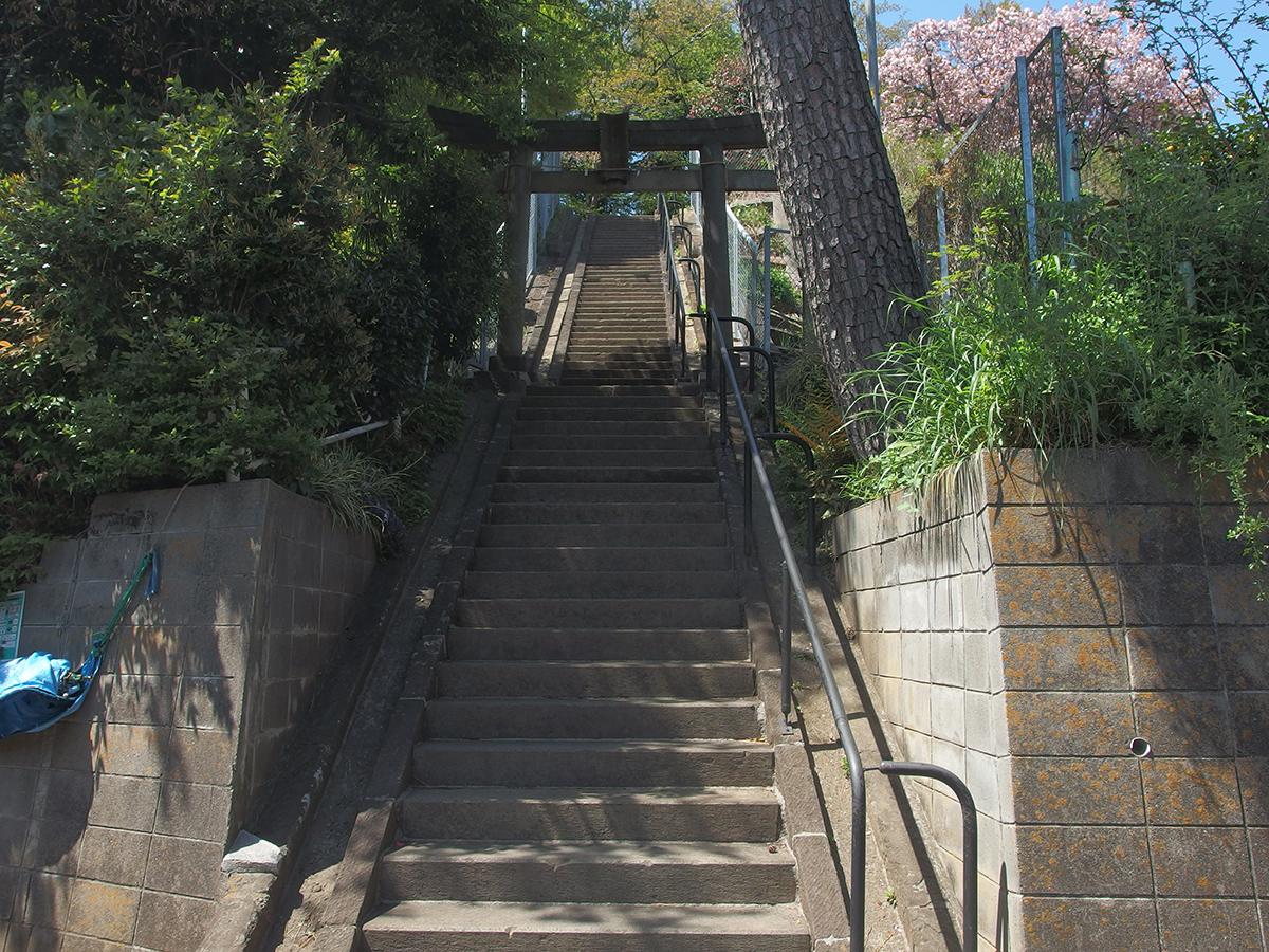 別所熊野神社写真