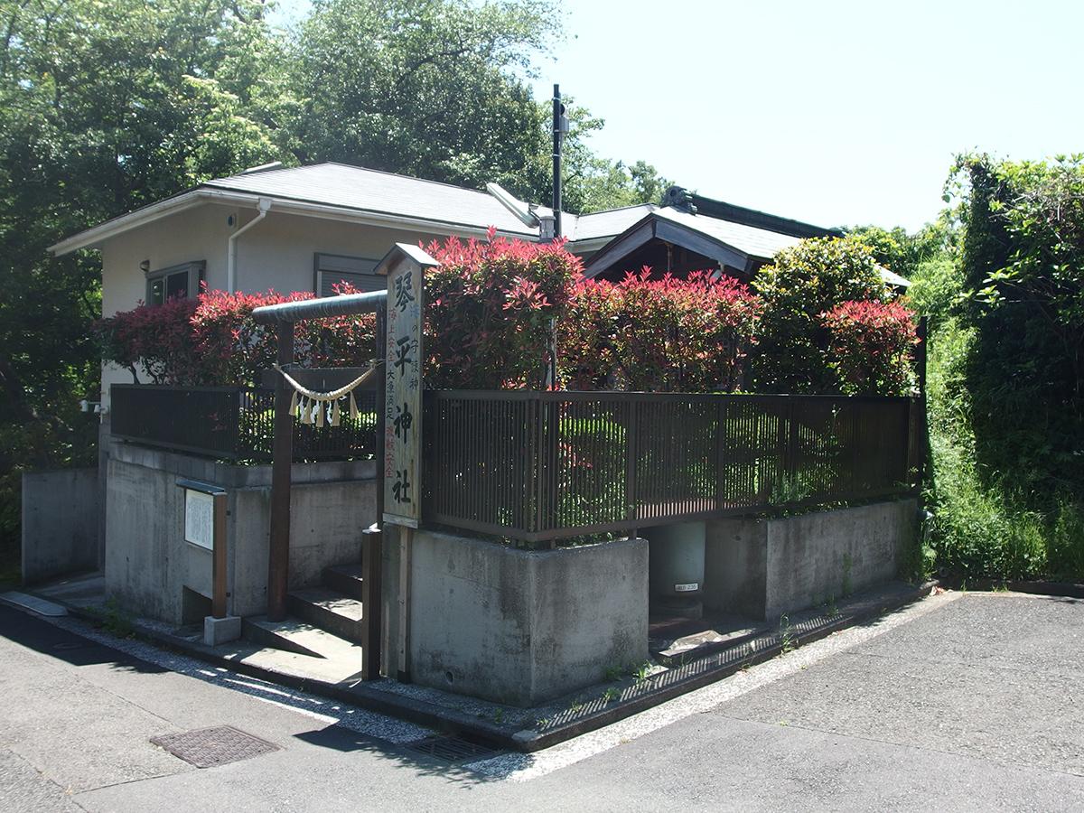 和田山琴平神社写真