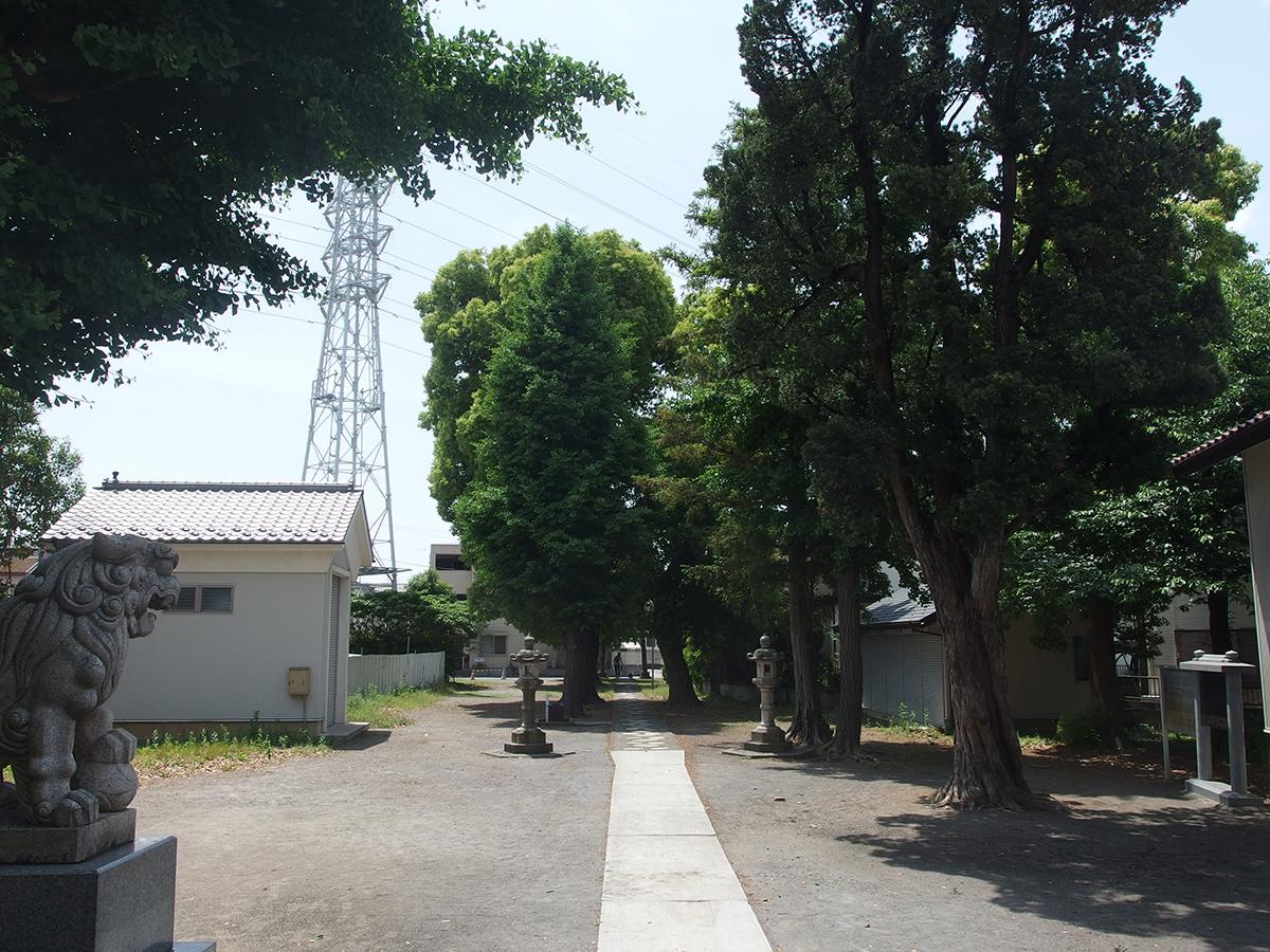 関神社(川崎市中原区)写真