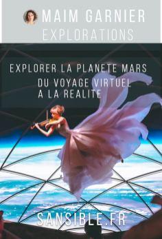 Spectacle musical à l'intérieur d'une navette BFR de SpaceX, vue d'artiste. Explorer la planète Mars, sur Sansible #sansible #spaceX #bfr #navette #espace #mars #planete #voyage #transport #explorationspatiale #violon #musique #art
