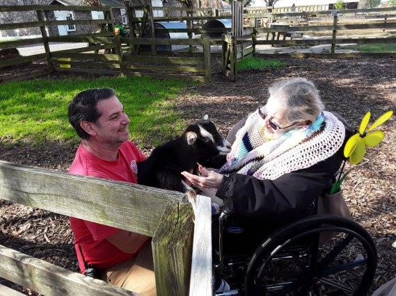 goats at Walk to End Alzheimer's