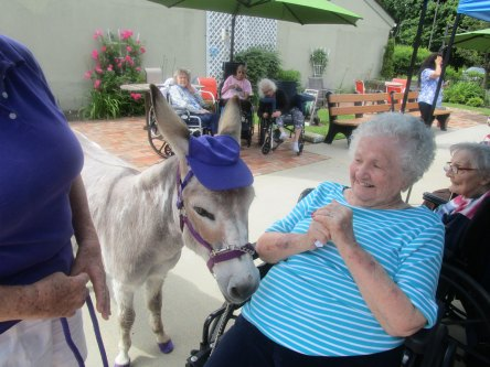resident with cute donkey