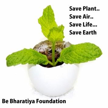 घर में ऑक्सीजन बढ़ाने वाले पौधे लगाएं grow Oxygen at home